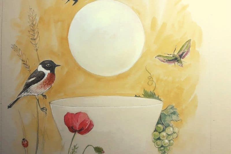 Laudato Si' - Oiseaux, nature